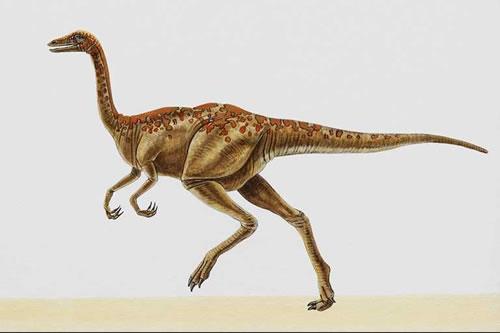 Название: Динозавр с большими оранжевыми пятнами на спине.