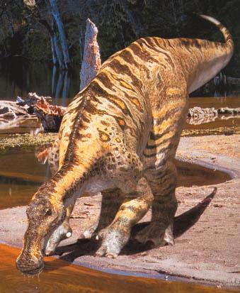 تاريخ الديناصورات معلومات شآملة ..}} p256.jpg