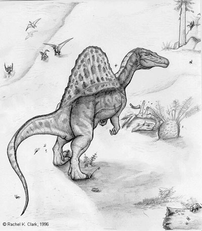 Spinosaurus Spino2